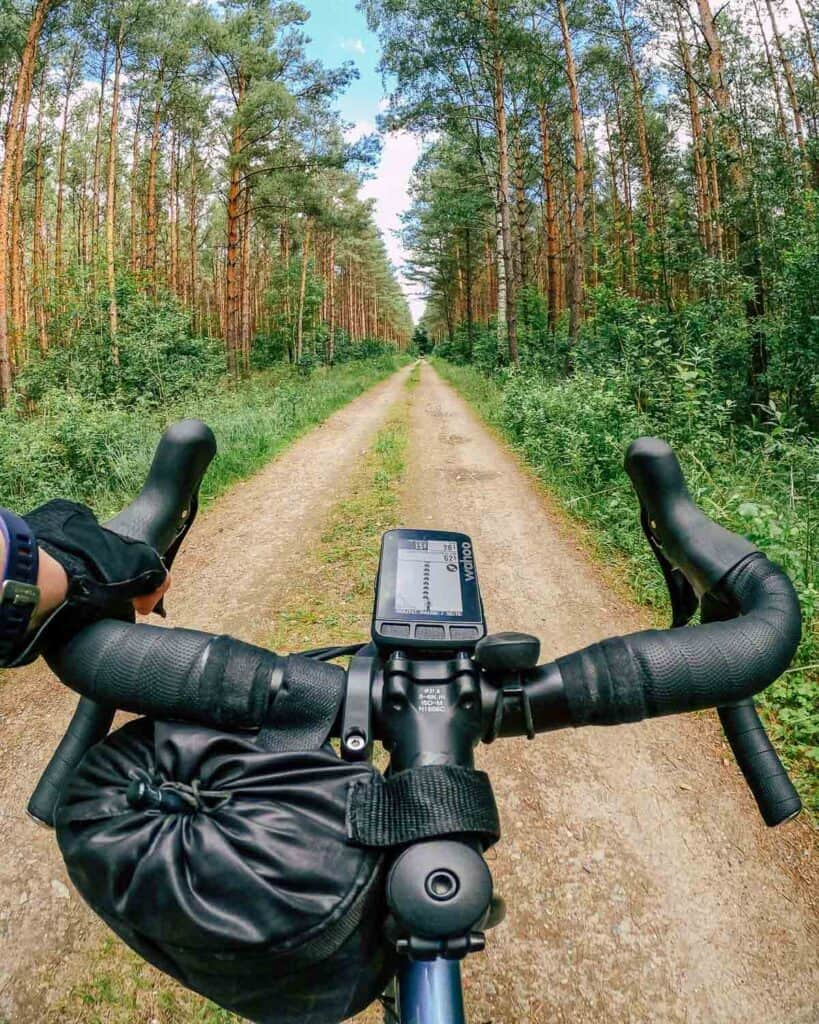 handlebar with navigation device in the woods
