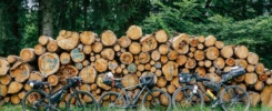 Bikepacking bikes in front of wooden pile