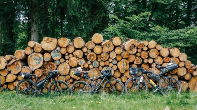 Bikepacking Fahrräder vor holzstapel