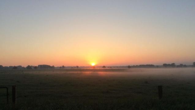 Sonnenaufgang als Belohnung nach deiner ersten Nachtfahrt.