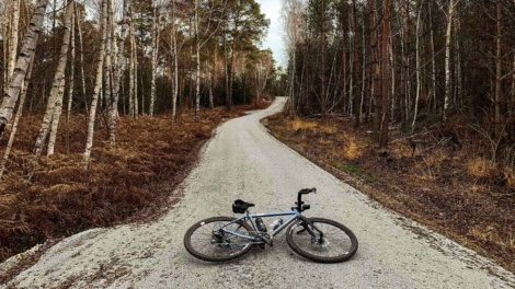 Bicycle lying on a gravel path in the forest